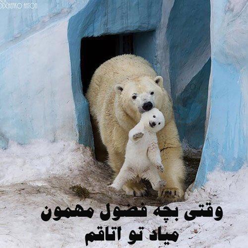 عکس نوشته باحال و خنده دار