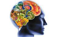 غذا های مضر برای مغز بشناسید